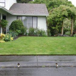 Landscape Maintenance Vancouver Wa 12