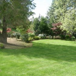 Landscape Maintenance Vancouver Wa 9