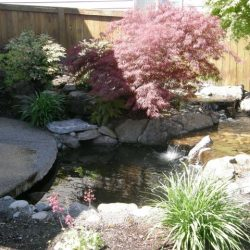 Rock Gardens Vancouver Wa 15