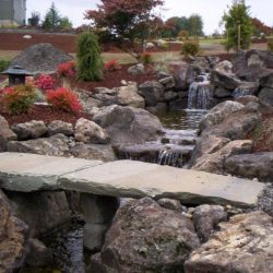 Rock Gardens Vancouver Wa 23