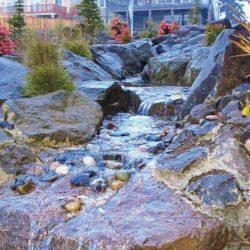 Rock Gardens Vancouver Wa 31