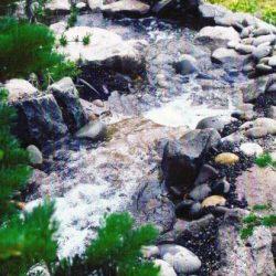Rock Gardens Vancouver Wa 32
