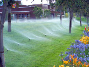irrigation-maintenance